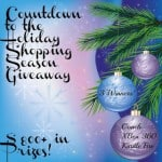 Countdown To The Holiday Shopping Season #Giveaway! #Win