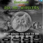 Ask Mr. Whiskers from Disney's FRANKENWEENIE! #Frankenweenie #Disney #Movie