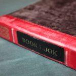Closed-Fab Gadget Case Alert! Twelve South Ipad Mini Book Book #Review & #Giveaway