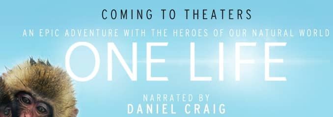 onelife_movie