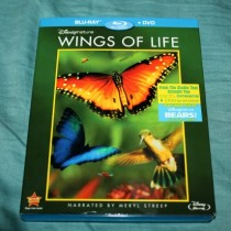 wingsoflife