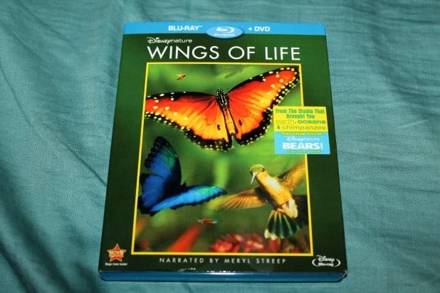 wingsoflife