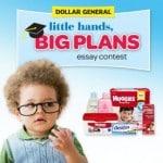 The Huggies® Little Hands, Big Plans Essay Contest!
