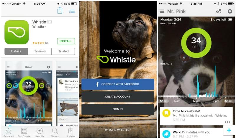 whistle-app