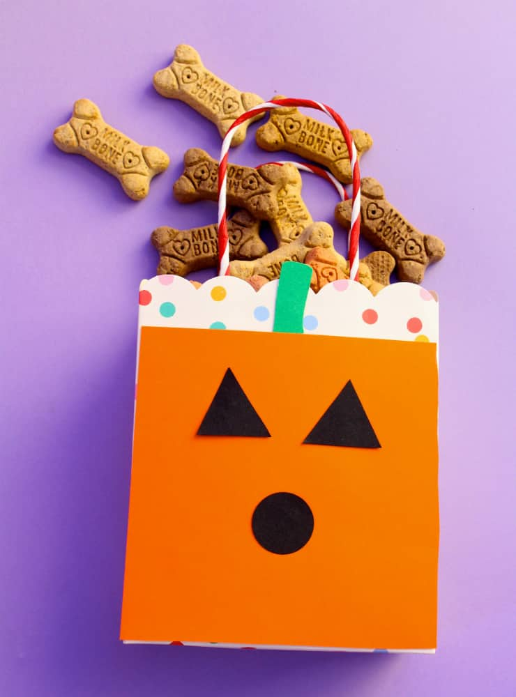 Halloween-DIY-TREAT-BAG-2