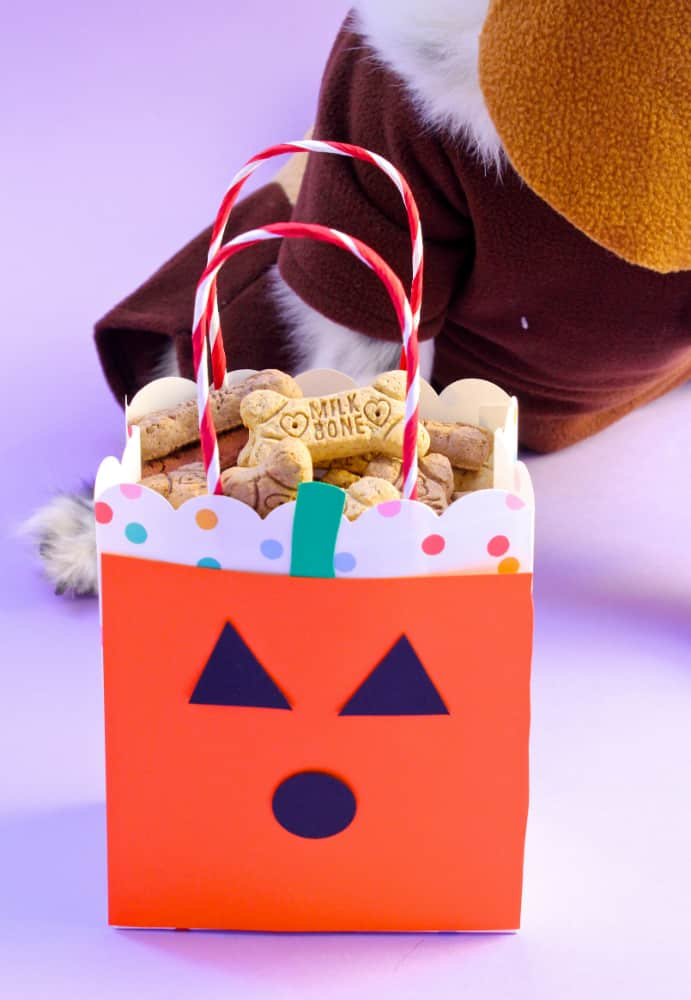 Mr.Pink-Halloween-DIY-TREAT-BAG