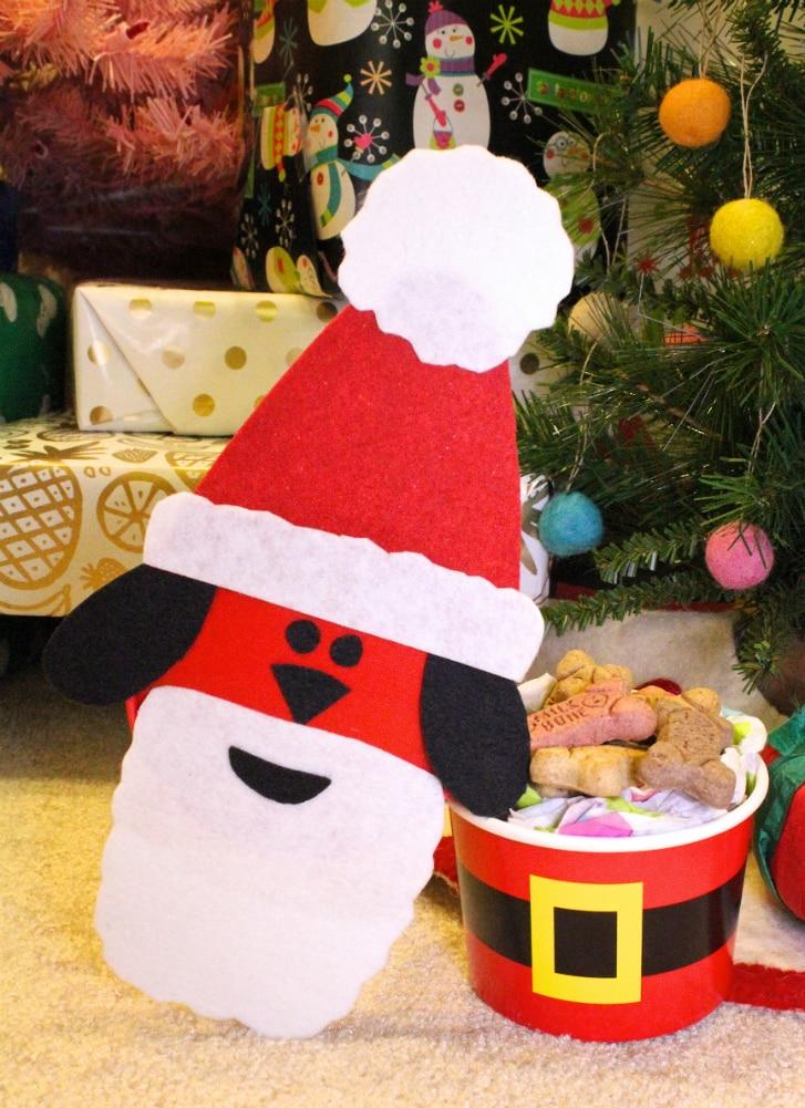 DIY-Santa-Dog-Gift-3