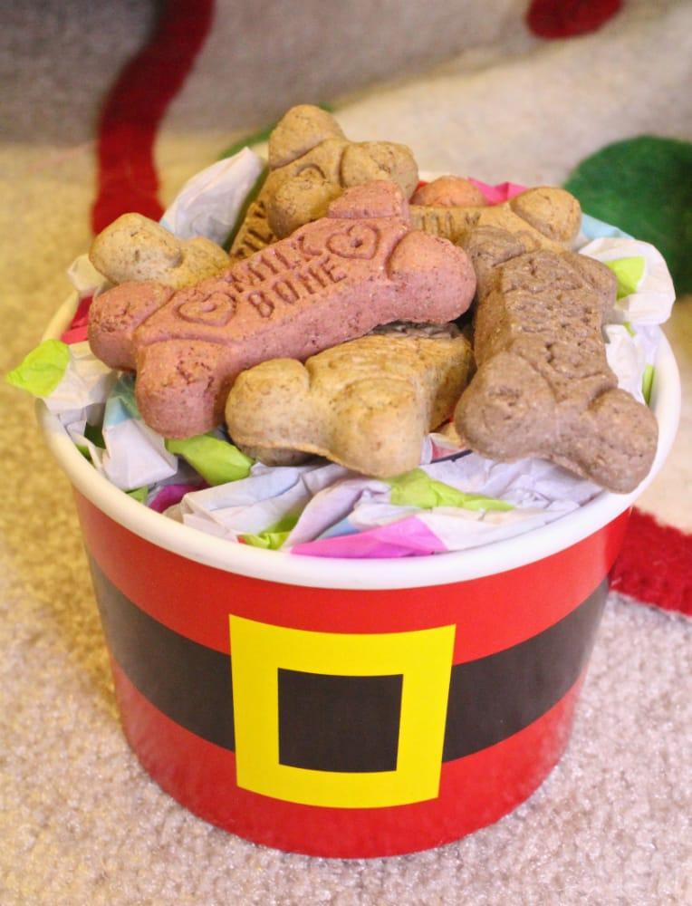 DIY-Santa-Dog-Gift-4
