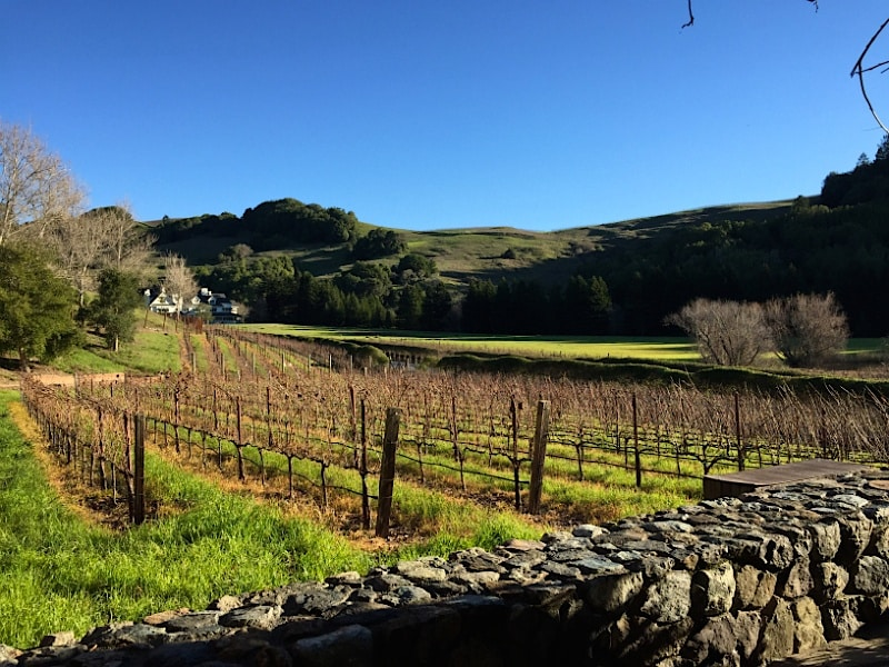 SKYWALKER-RANCH-32