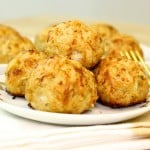 Chicken And Rice Meatballs Recipe & My Pet Profile!
