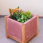 Easy DIY Project: Build a Paver Planter!