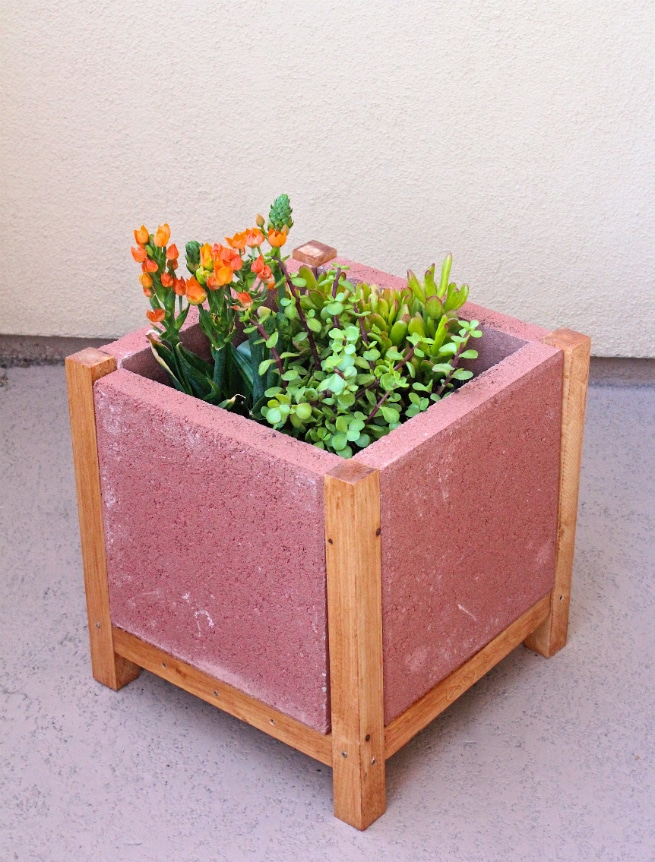 DIY-PAVER-PLANTER