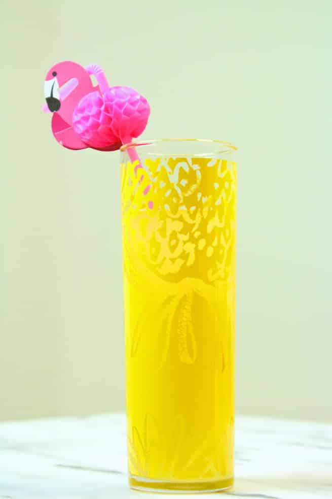 Country- Time- Lemonade-Starters-1