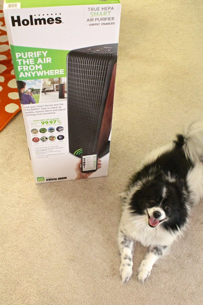 Holmes® Smart Air Purifier with WeMo-1