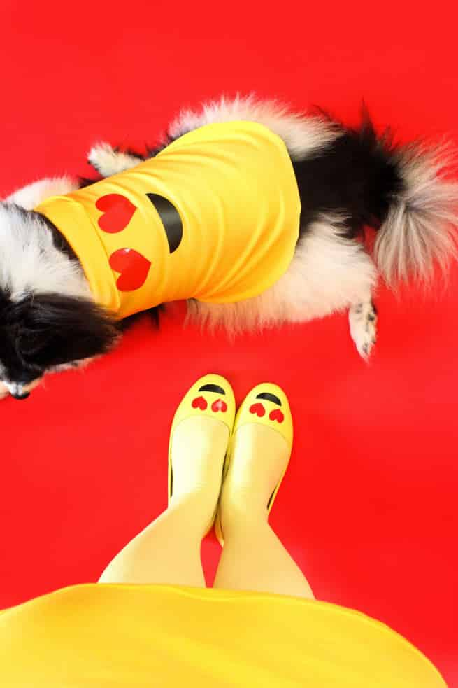 DIY-Emoji-Halloween-Dog-Costume-2