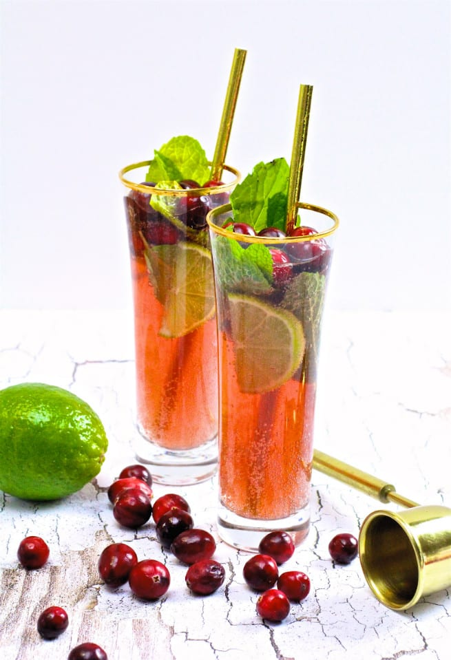 Virgin Cranberry Mojito Drink Recipe