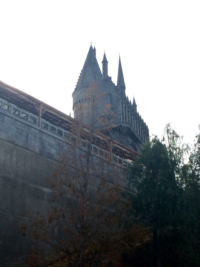The Wizarding World of Harry Potter-3