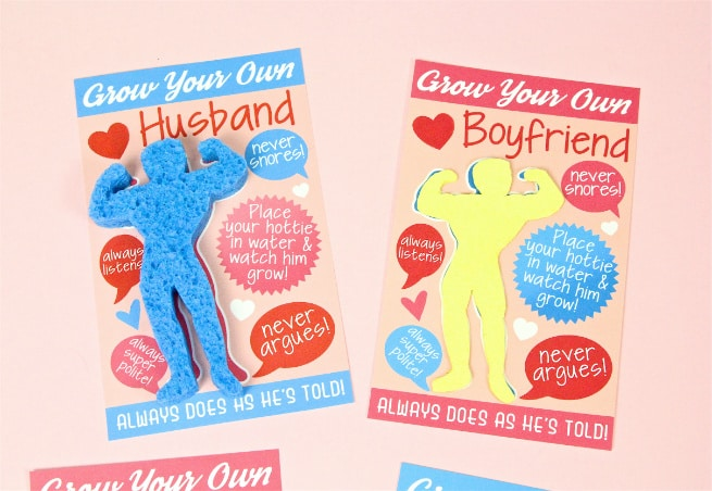 DIY Grow Your Own Boyfriend or Husband gift