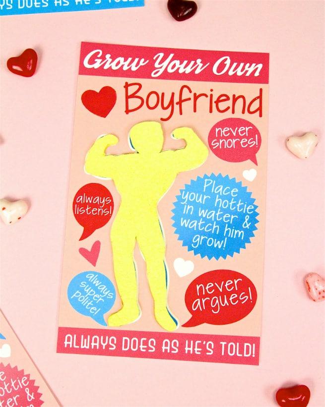 DIY Grow Your Own Boyfriend