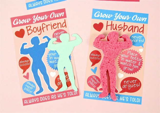 DIY Grow Your Own Boyfriend:Husband Sponges