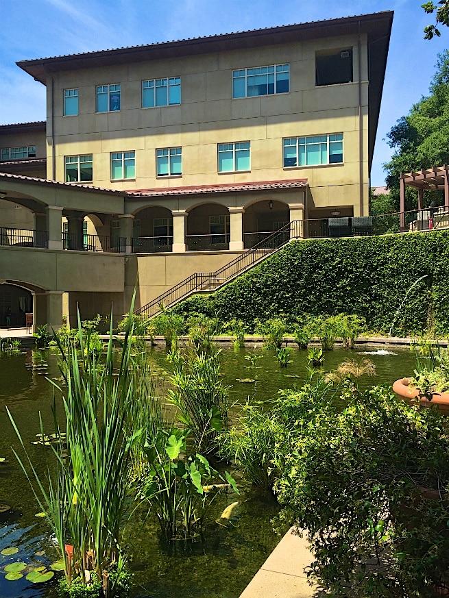 Dreamworks Campus 2