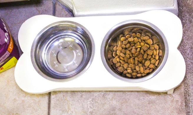 Iams in bowl