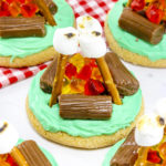 End of Summer Campfire Cookies!