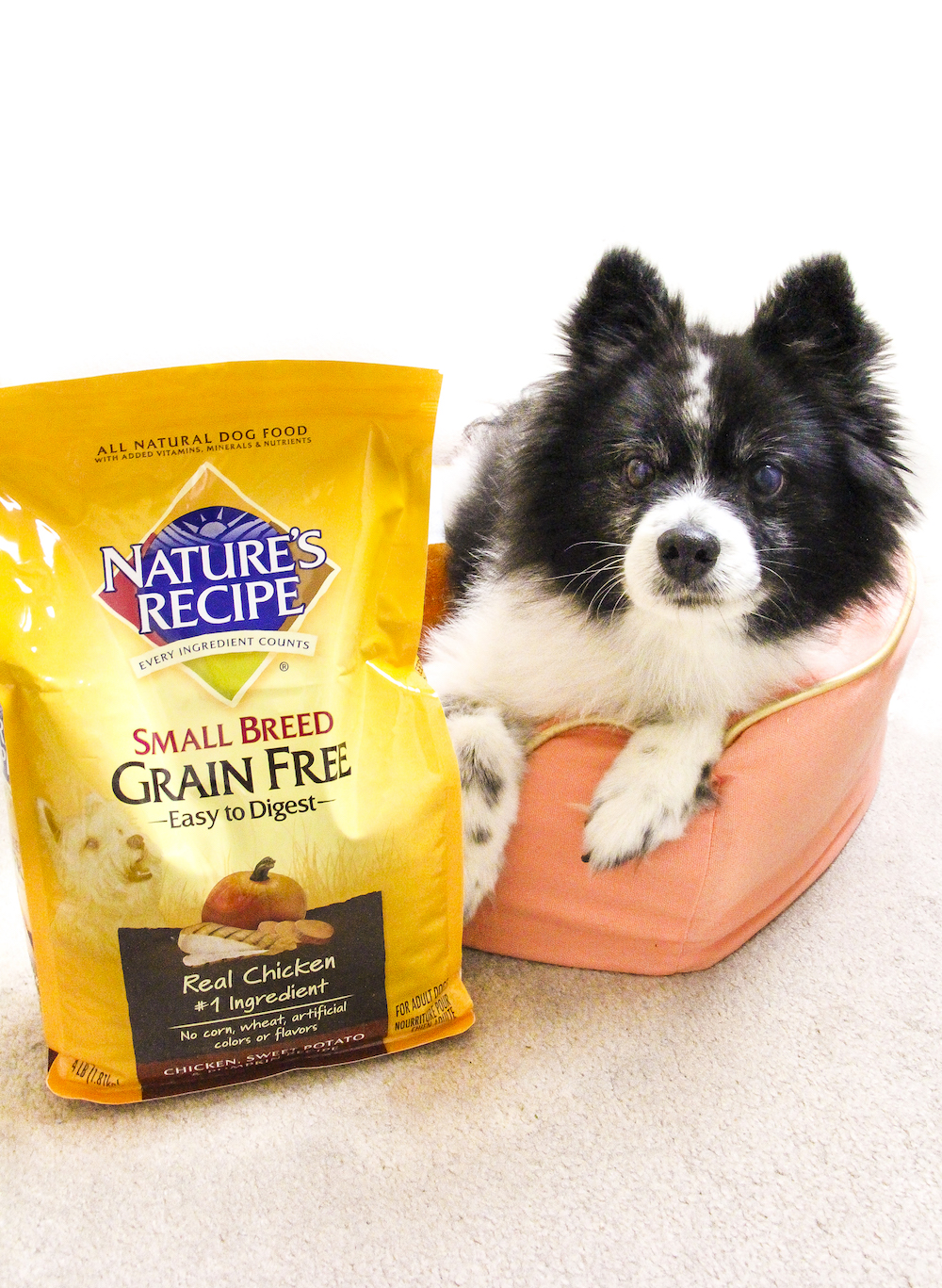 Pink Loves His Nature's Recipe Dog Food