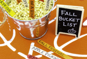 Easy DIY Fall Bucket List!