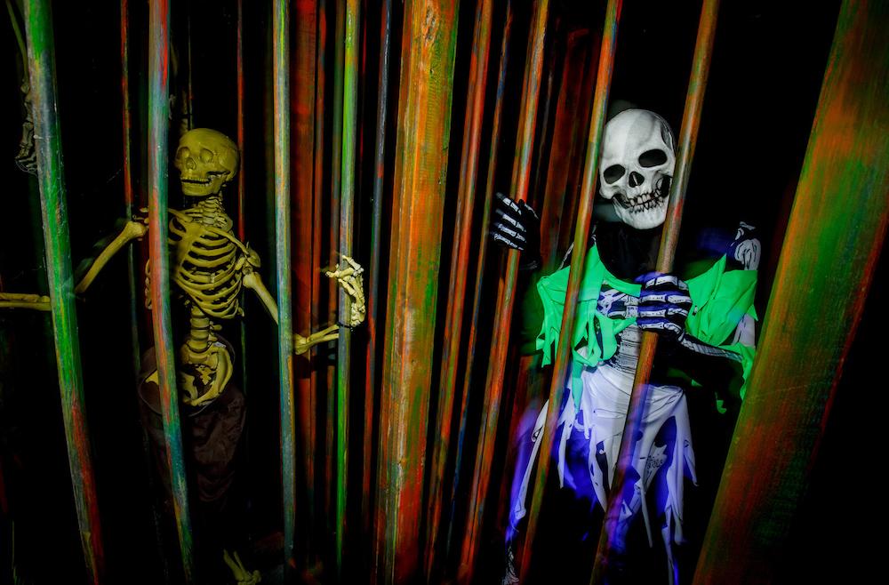 The Curse of Pandora's Box Maze at Halloween Horror Nights 2021 at Universal Studios Hollywood